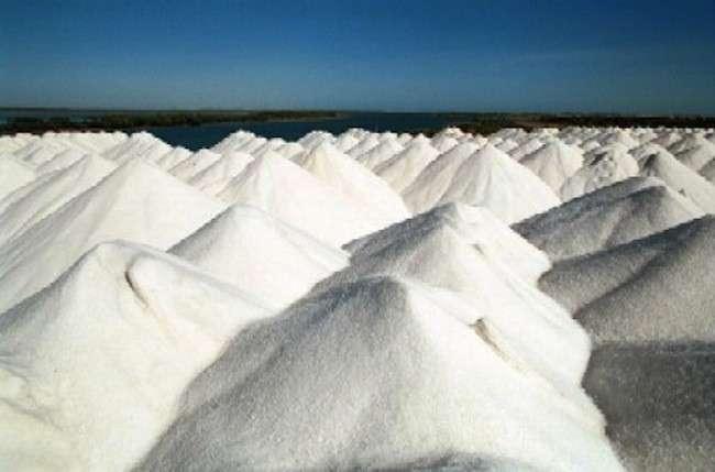 Producción de Sal